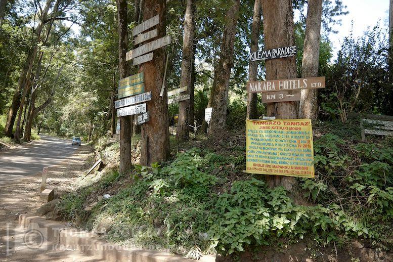 2018_kilimanjaro_2_140