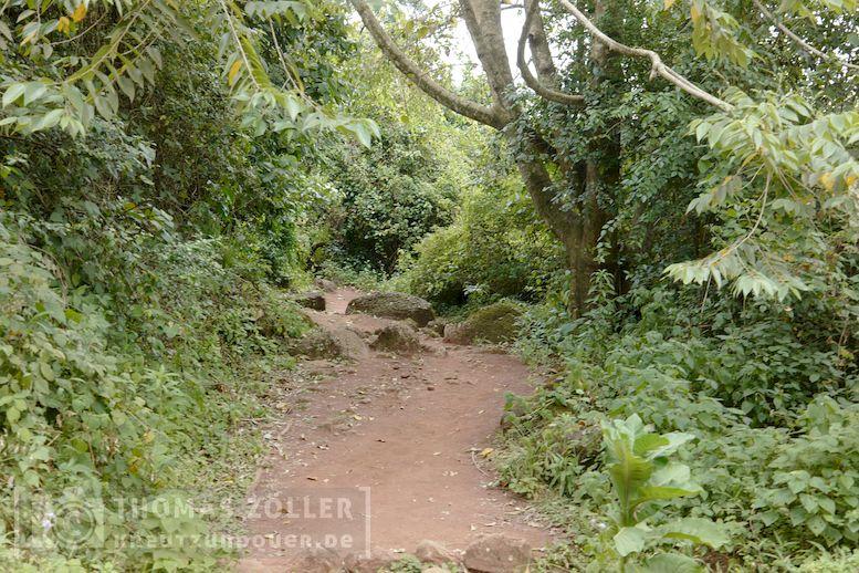 2018_kilimanjaro_2_169