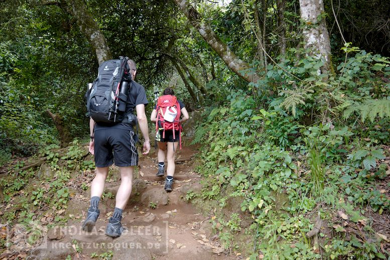 2018_kilimanjaro_2_170