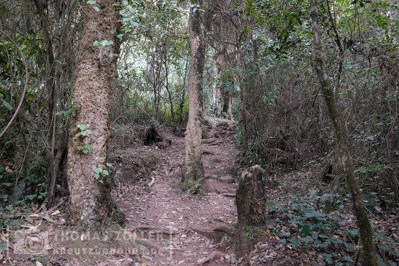 2018_kilimanjaro_2_175