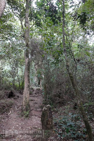2018_kilimanjaro_2_176