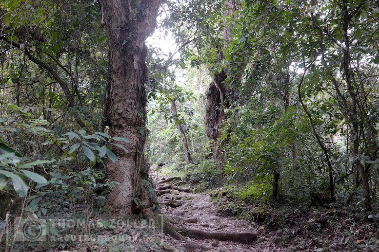 2018_kilimanjaro_2_177
