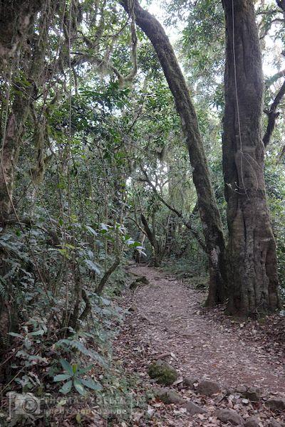 2018_kilimanjaro_2_178