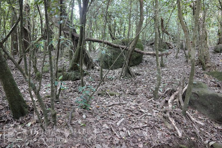 2018_kilimanjaro_2_186