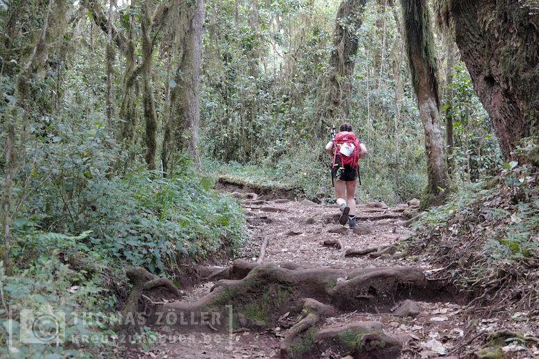 2018_kilimanjaro_2_208