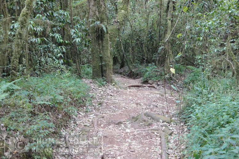 2018_kilimanjaro_2_209