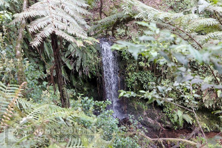 2018_kilimanjaro_2_210
