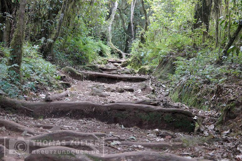 2018_kilimanjaro_2_211