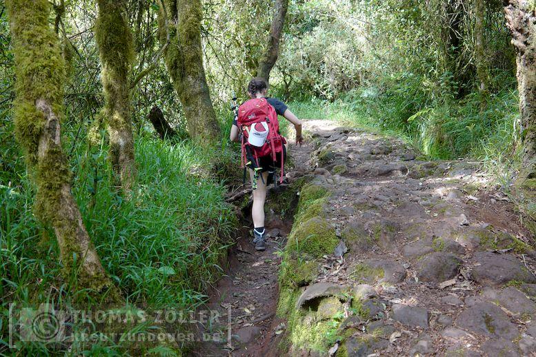 2018_kilimanjaro_2_227