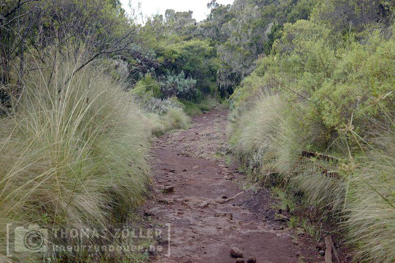 2018_kilimanjaro_3_119