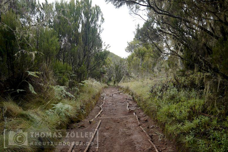 2018_kilimanjaro_3_125