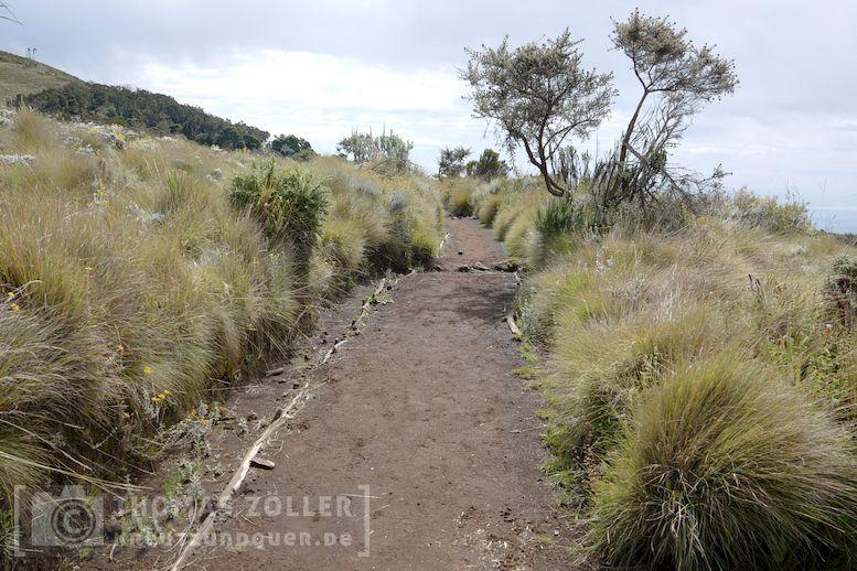 2018_kilimanjaro_3_156