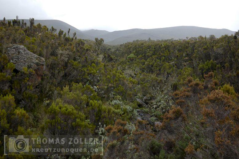 2018_kilimanjaro_3_169