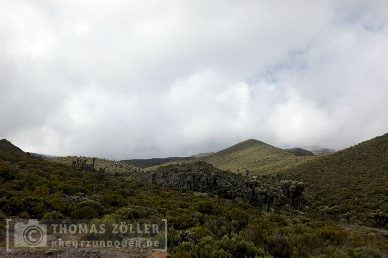 2018_kilimanjaro_3_244