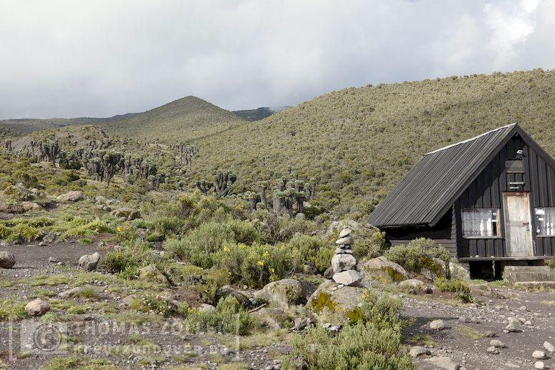 2018_kilimanjaro_3_251