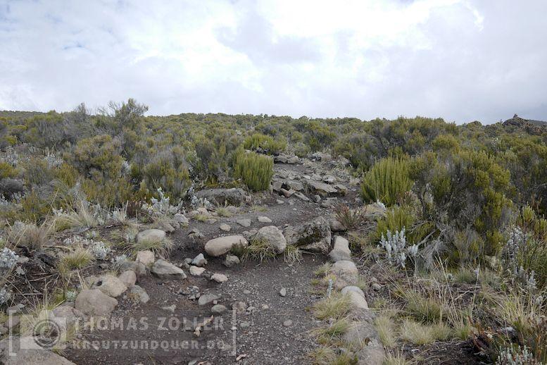 2018_kilimanjaro_4_107