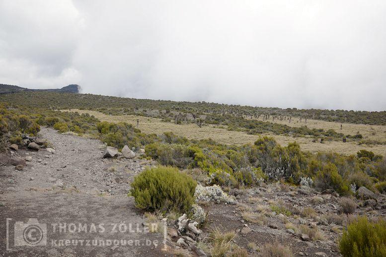 2018_kilimanjaro_4_116