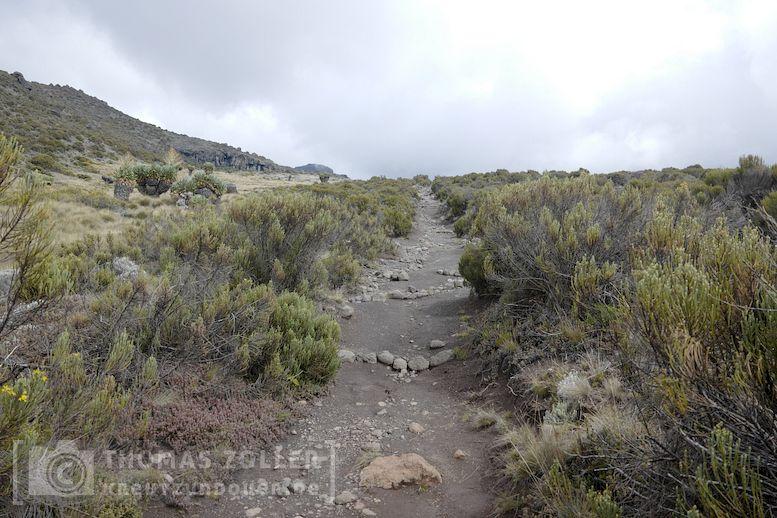 2018_kilimanjaro_4_122