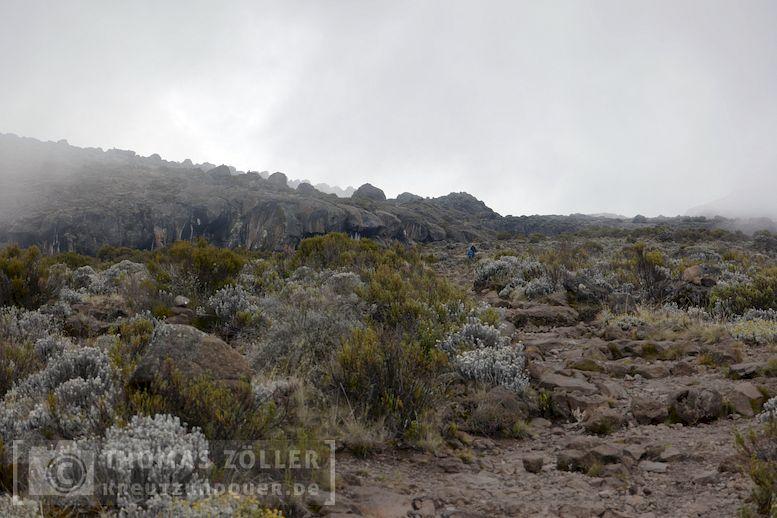 2018_kilimanjaro_4_147