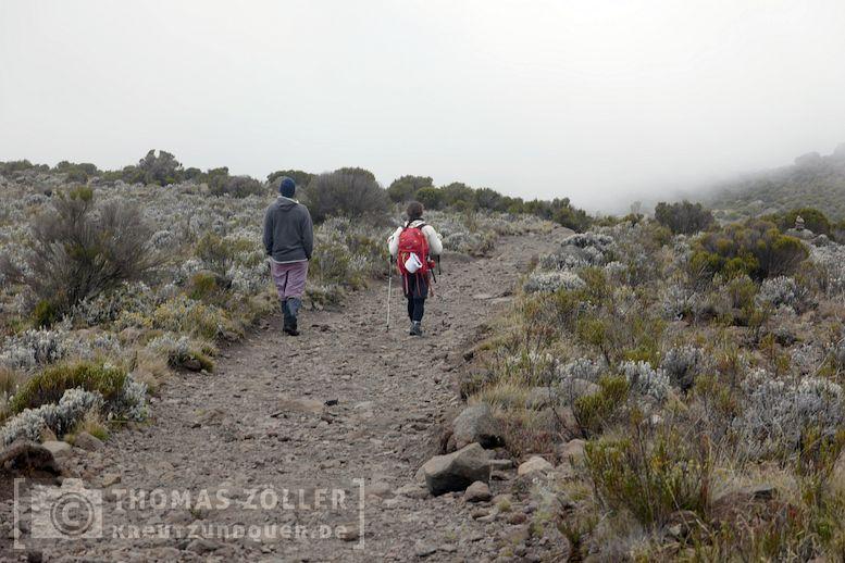 2018_kilimanjaro_4_149