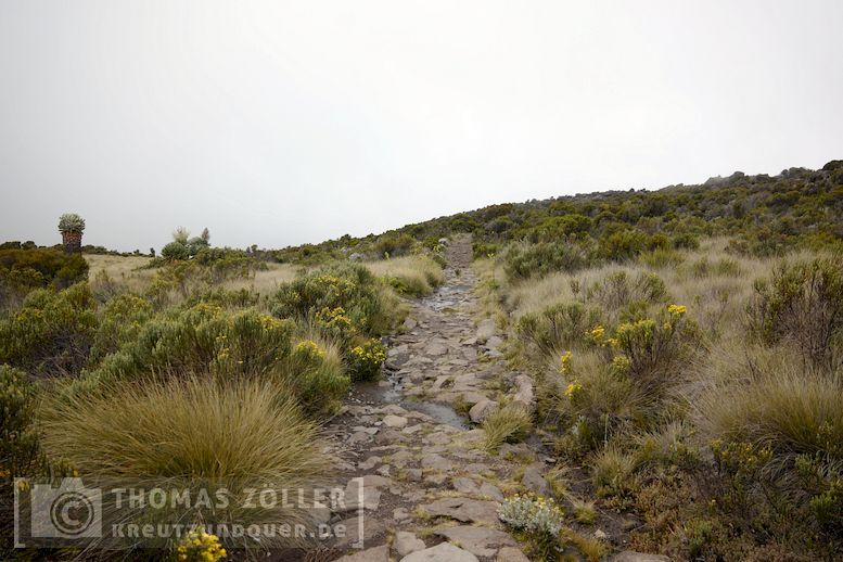 2018_kilimanjaro_4_151