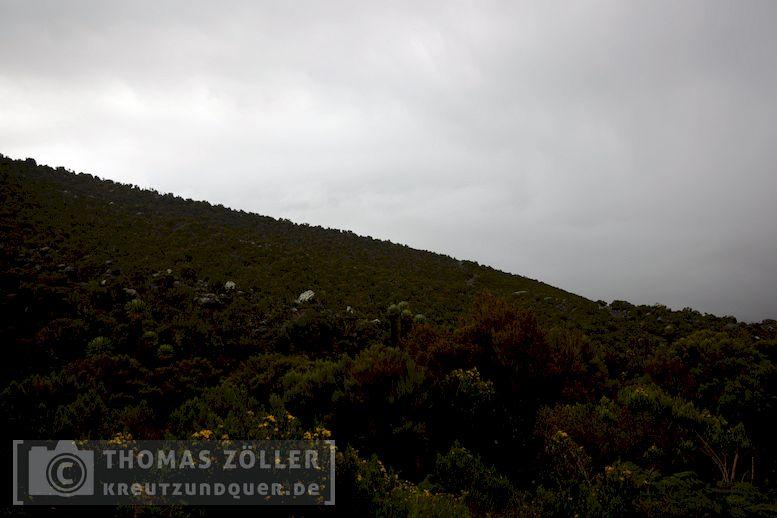 2018_kilimanjaro_4_165