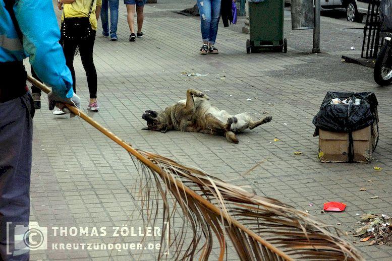 2017dez_aconcagua_129