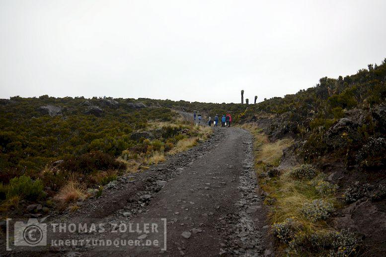 2018_kilimanjaro_5_110