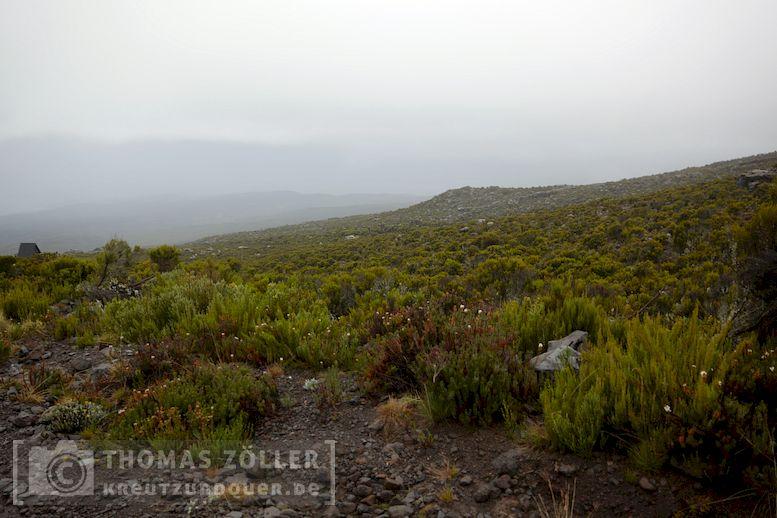 2018_kilimanjaro_5_111