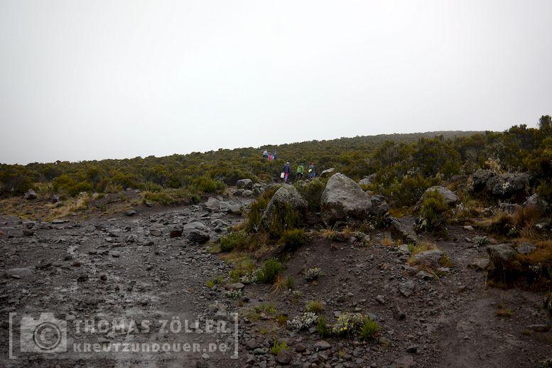 2018_kilimanjaro_5_113