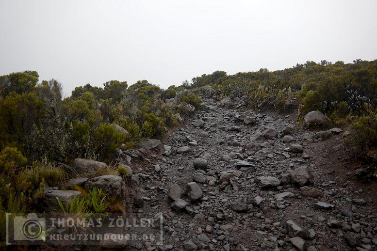 2018_kilimanjaro_5_115