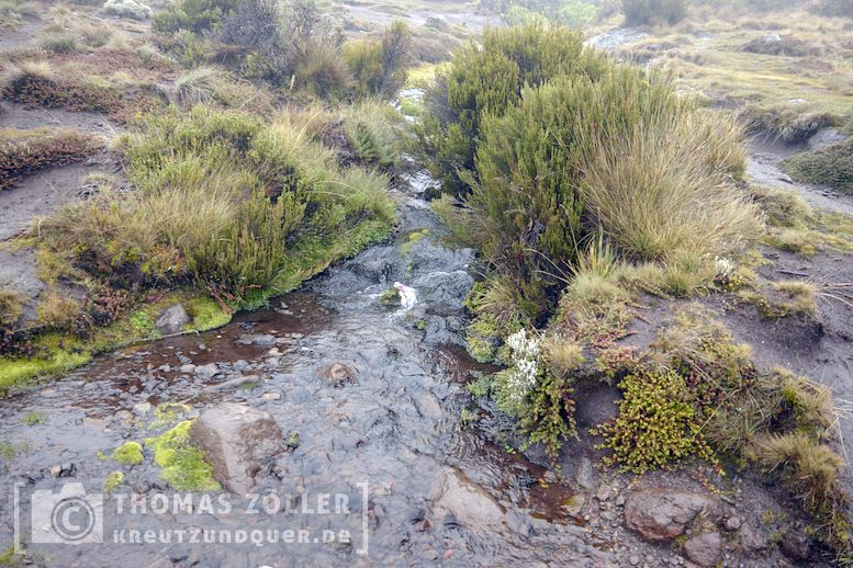 2018_kilimanjaro_5_138