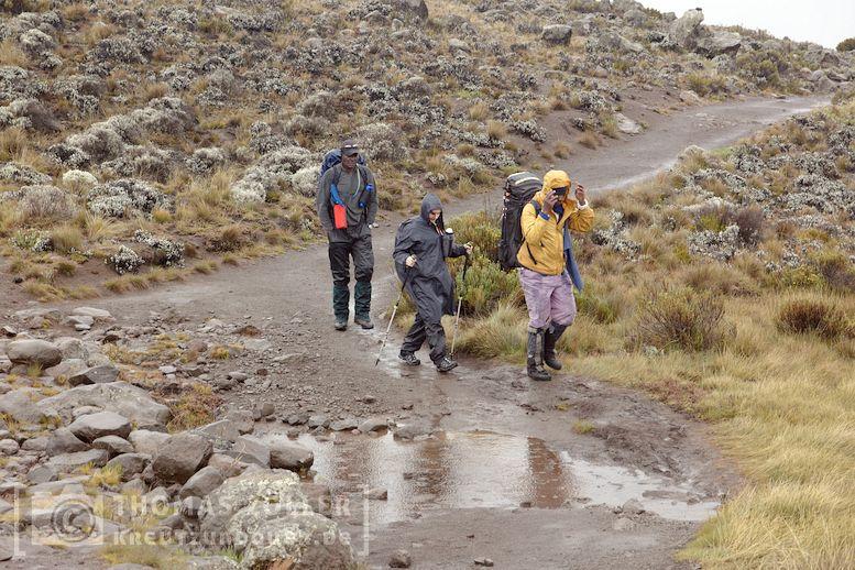 2018_kilimanjaro_5_152