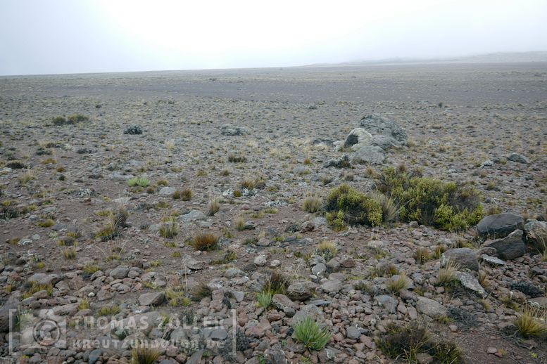 2018_kilimanjaro_5_165