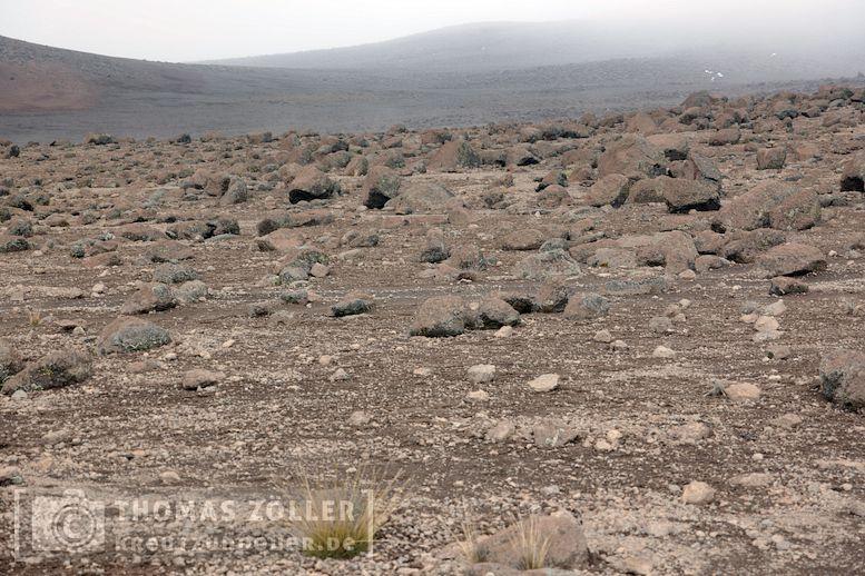 2018_kilimanjaro_5_196