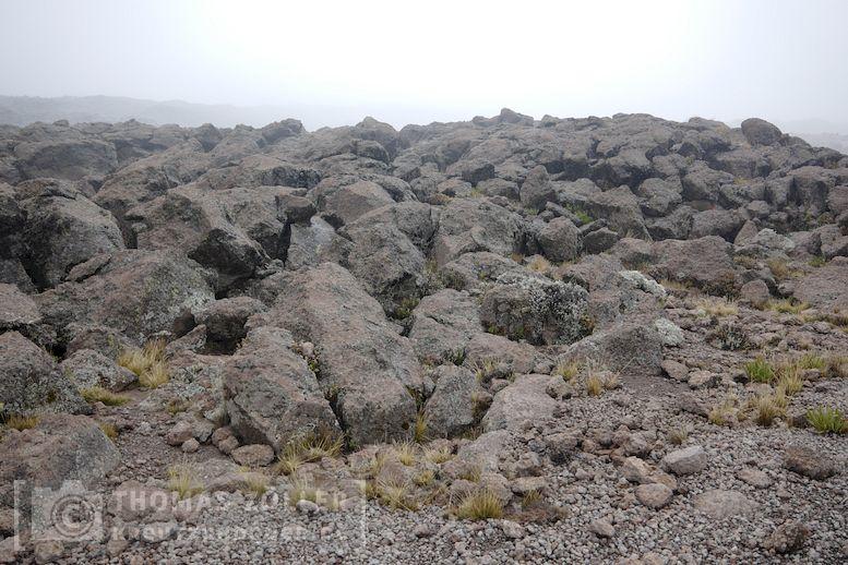 2018_kilimanjaro_5_201
