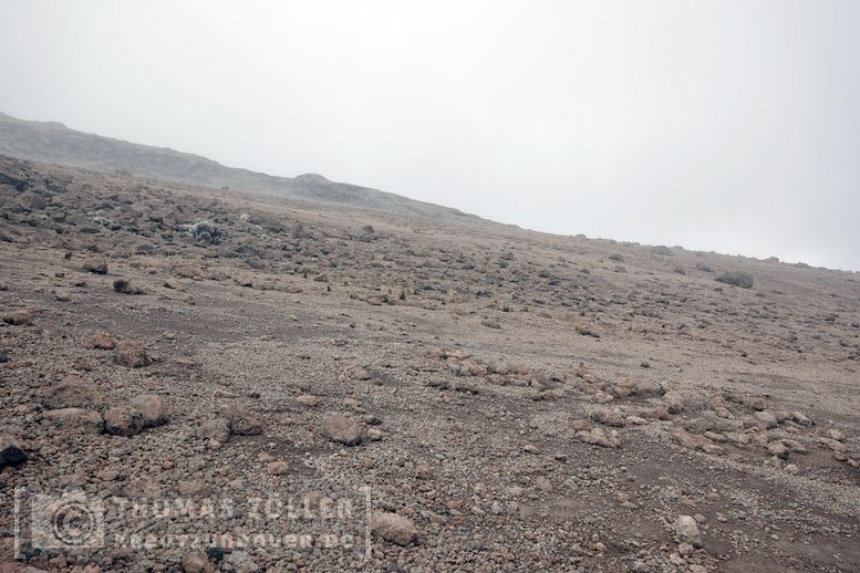 2018_kilimanjaro_5_202