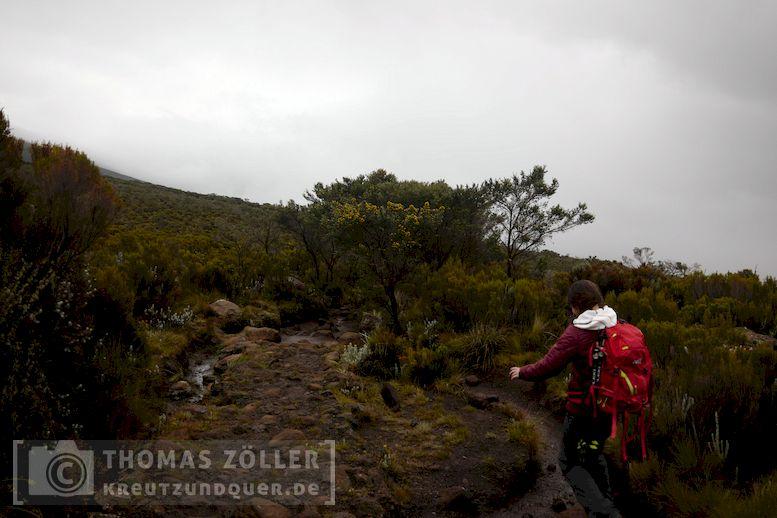 2018_kilimanjaro_6_100