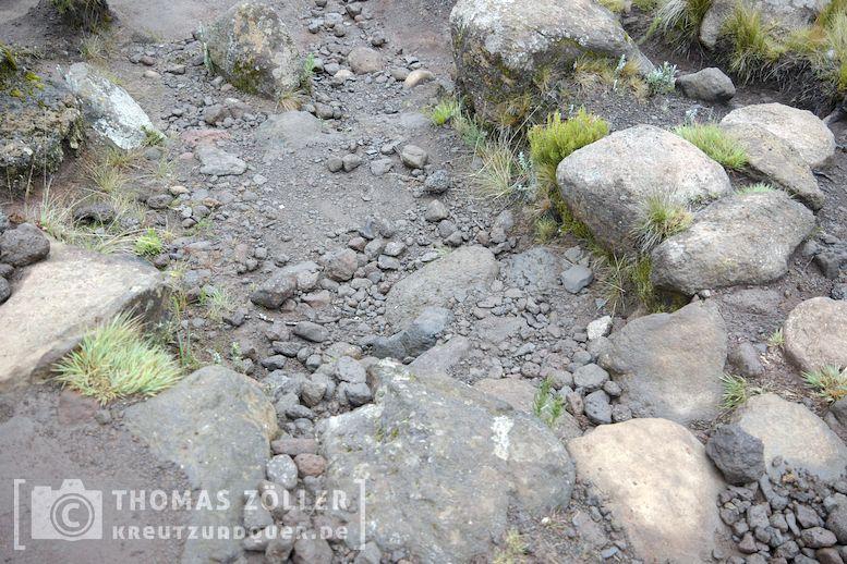 2018_kilimanjaro_6_108