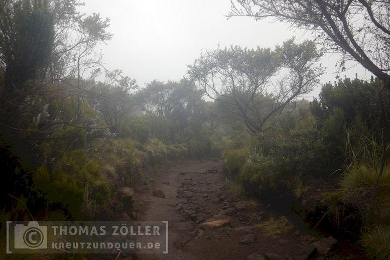 2018_kilimanjaro_6_119