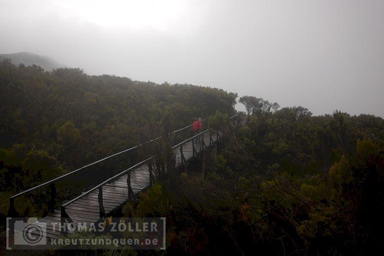 2018_kilimanjaro_6_121