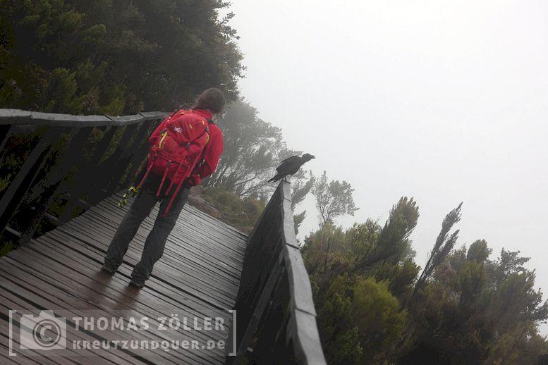 2018_kilimanjaro_6_122
