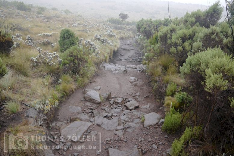 2018_kilimanjaro_6_124