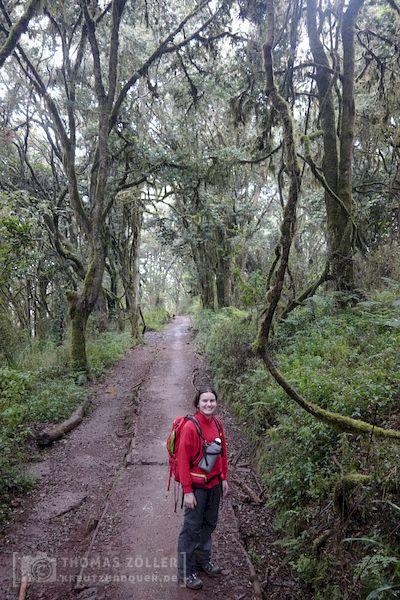 2018_kilimanjaro_6_134