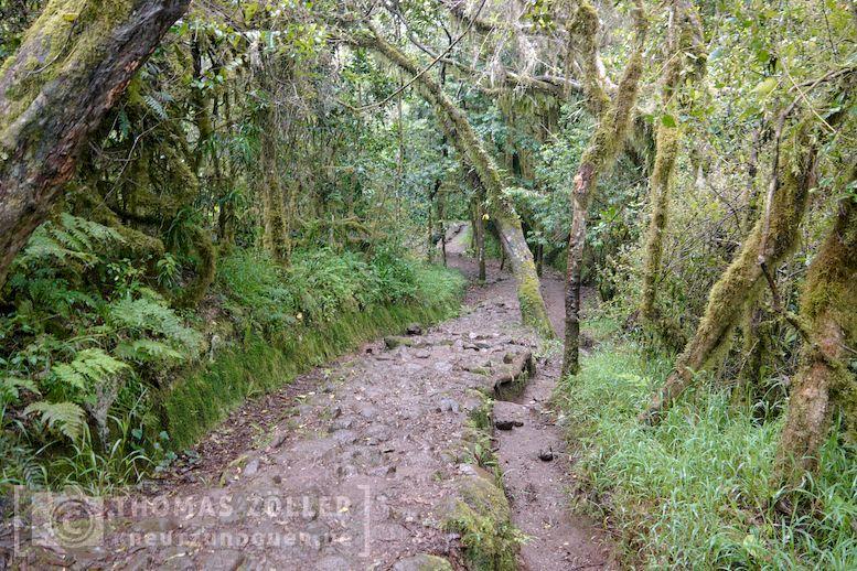 2018_kilimanjaro_6_138