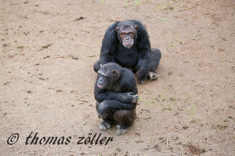 kenya_april_2015_day3_176