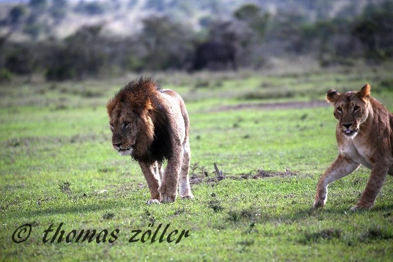 kenya_april_2015_day3_194