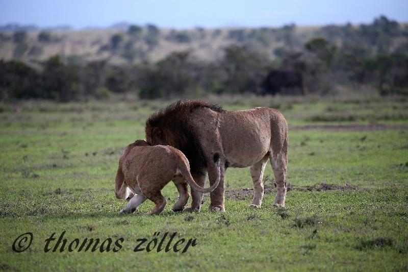 kenya_april_2015_day3_195