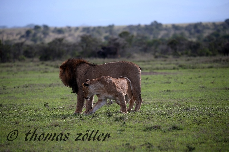 kenya_april_2015_day3_197