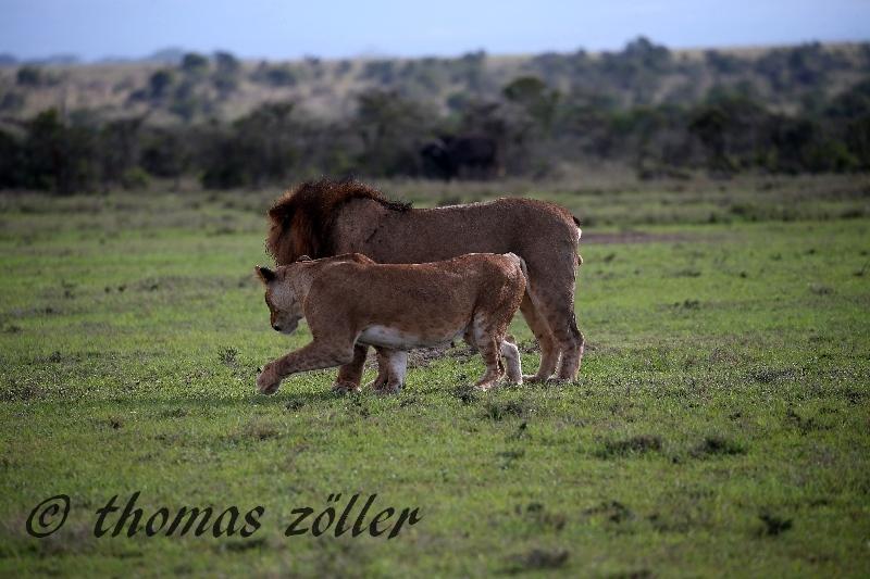 kenya_april_2015_day3_198